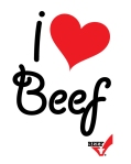 Beef Checkoff Program