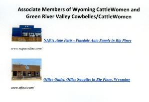 Associate Members of Wyoming CattleWomen and Green River Valley Cowbelles/CattleWomen